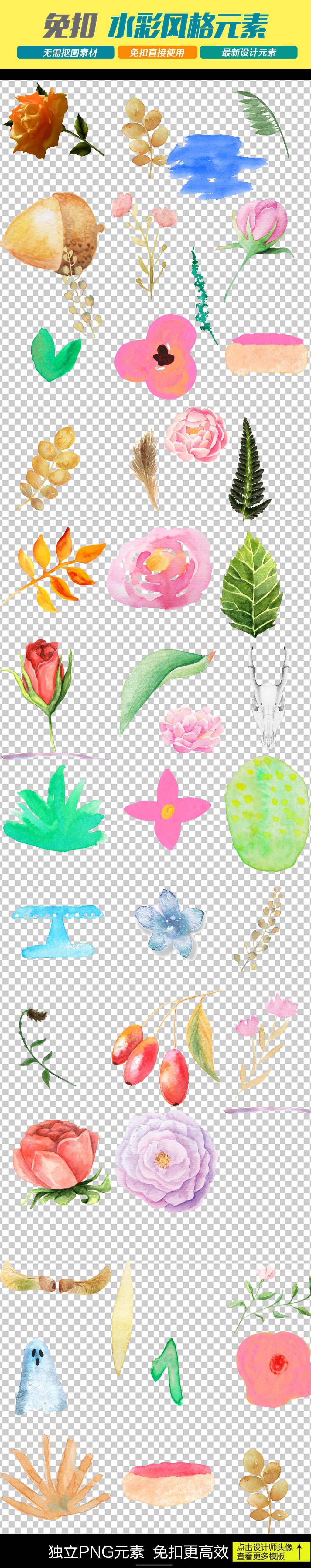 花纹边框鲜花插画北欧装饰画作花草png