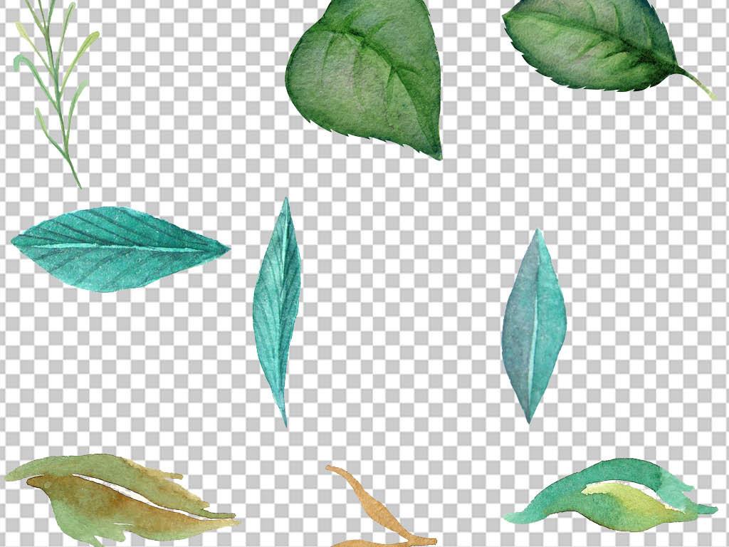 手绘手抄报装饰元素树叶花纹边框插画鲜花花草花草边框边框装饰鲜花