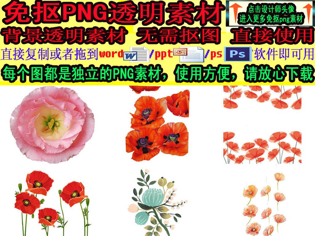 鲜花罂粟花免抠透明png素材1