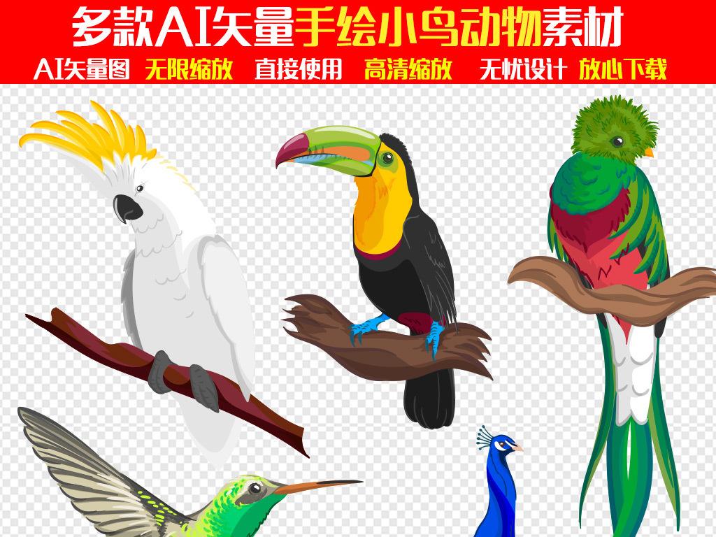 水彩素材手绘鸟类手绘水彩水彩手绘鹦鹉图片鹦鹉的图片卡通鹦鹉鹦鹉鸟