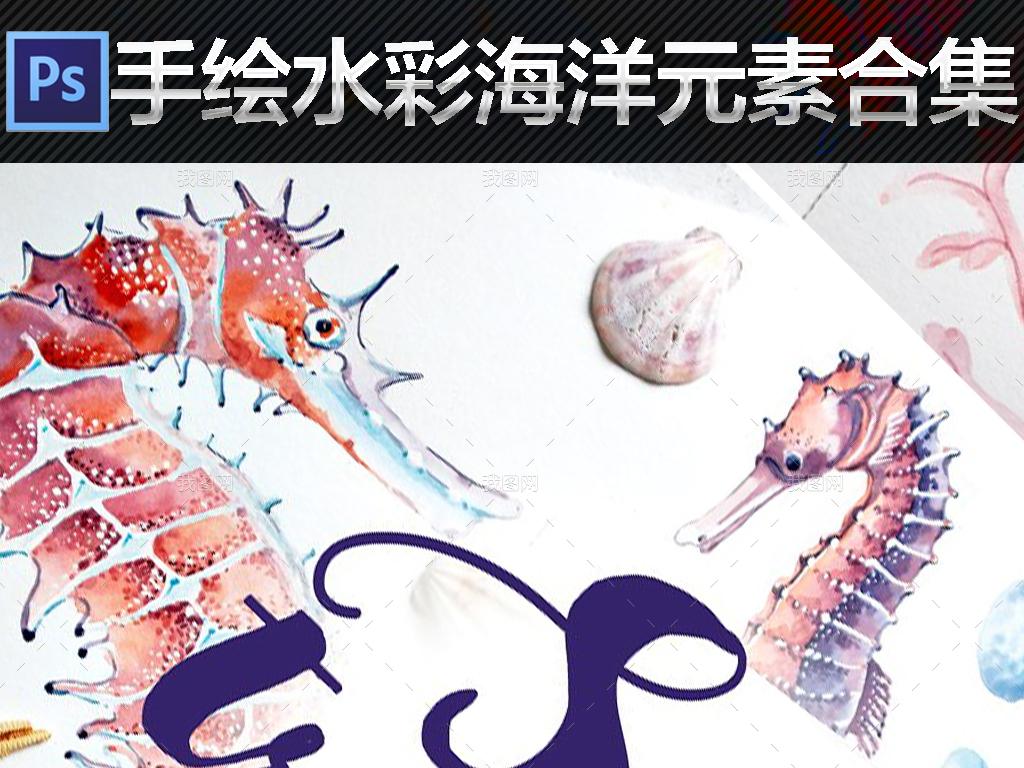 高清免扣手绘水彩海洋生物图案元素合集
