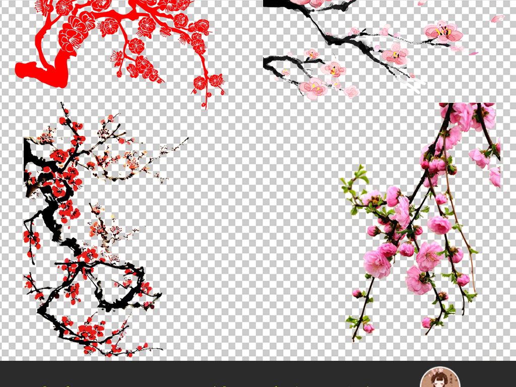 手绘樱花树枝黑白