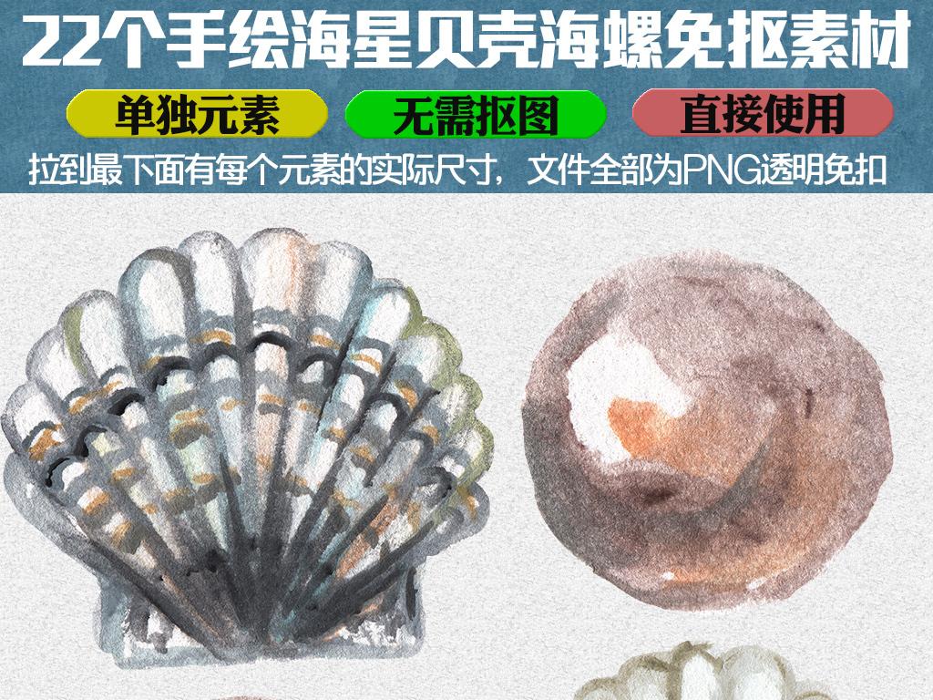高清唯美手绘海螺贝壳海星png免抠素材