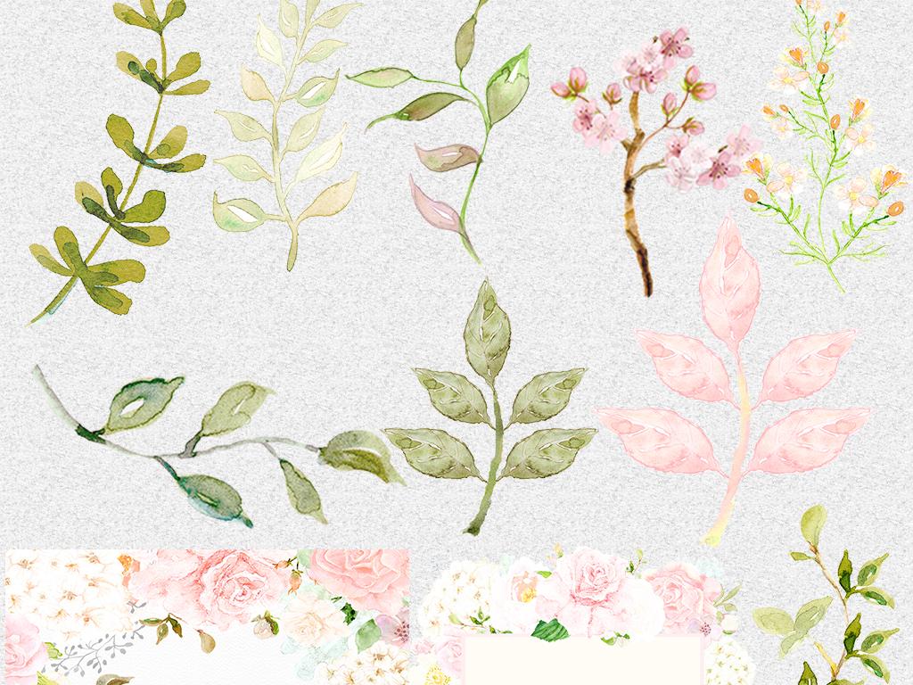 手绘水彩文艺小清新水彩树叶滕条玫瑰花叶子元素淡雅花朵花束淡雅清新