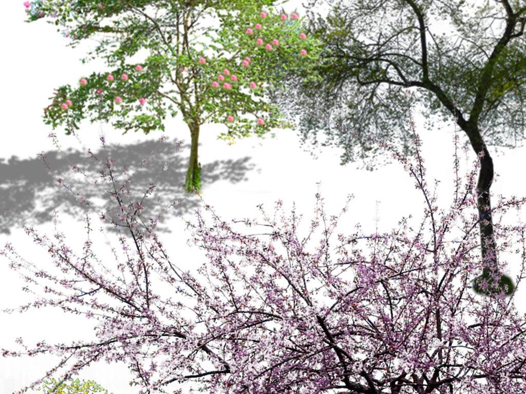 公园广场城市规划毕业作业绿化植物绿色背景绿色环保植物设计元素树木