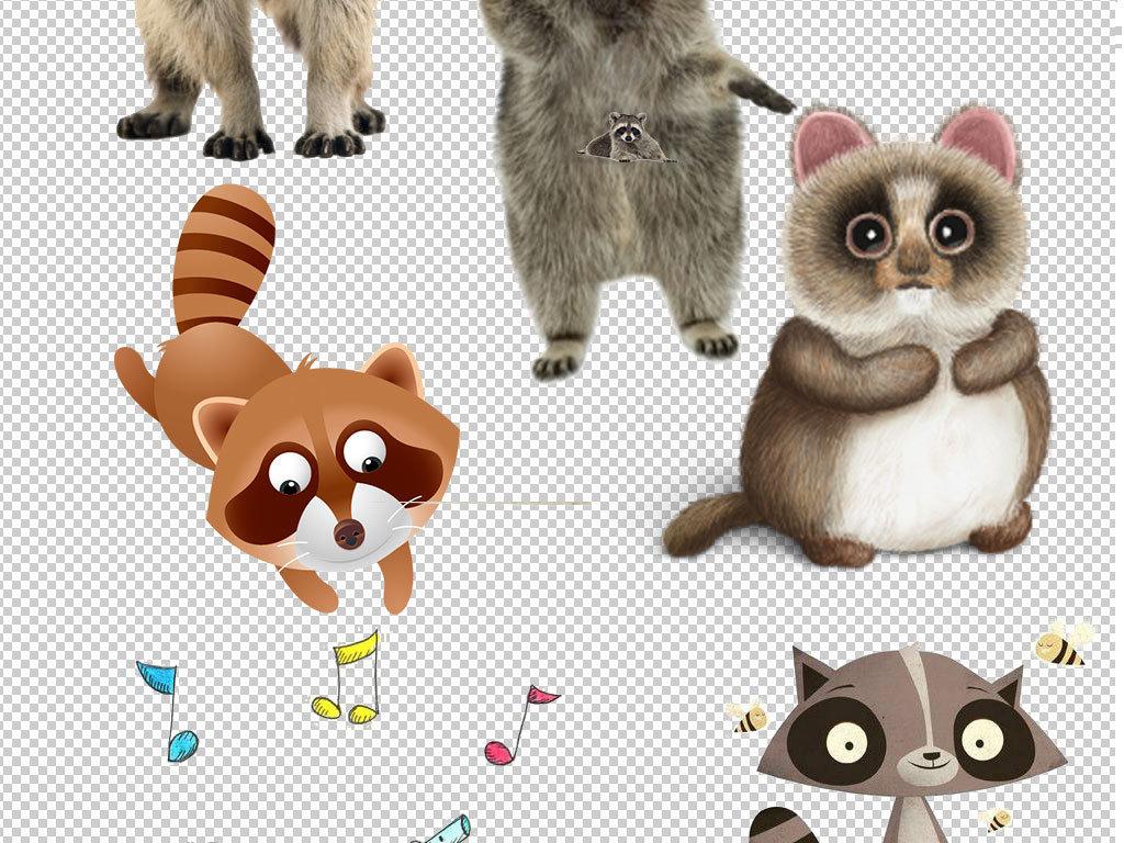 卡通浣熊动物图片海报素材