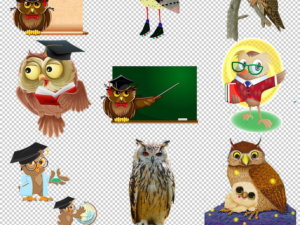 手绘猫头鹰小鸟动物卡通形象元素