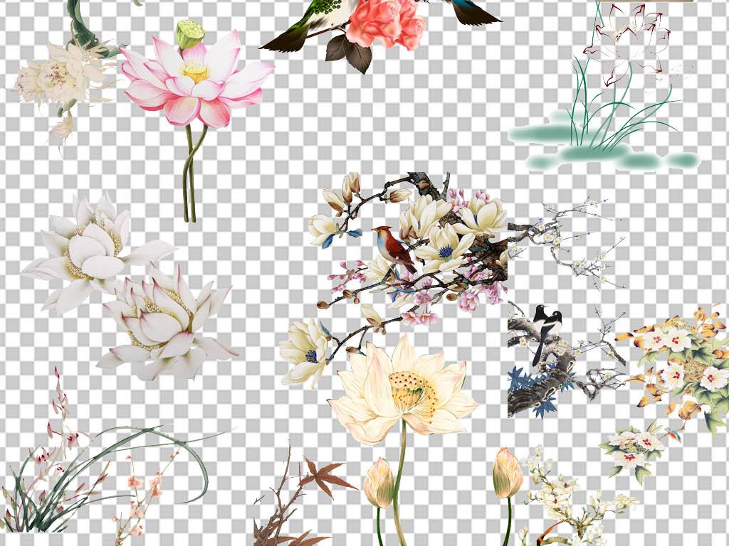 中式装饰古风工笔画花朵牡丹花花枝春意小鸟水墨鱼鲤鱼兰花