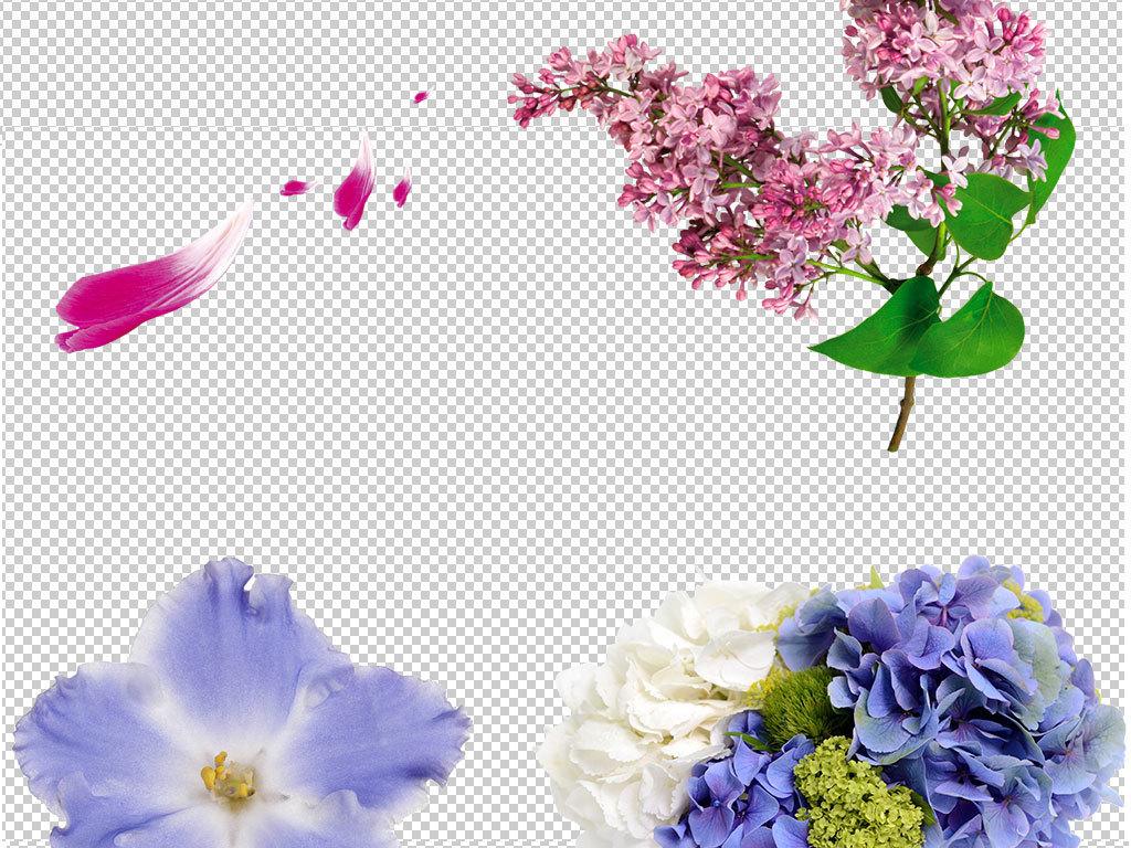 手绘水彩唯美花朵玫瑰花图片玫瑰花照片素材玫瑰花图片素材玫瑰花psd