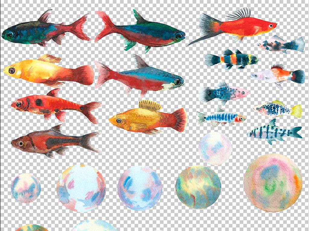动物抽象抽象素材畅游动物素材水彩年年有鱼金龙鱼卡通鱼小鱼鱼水彩