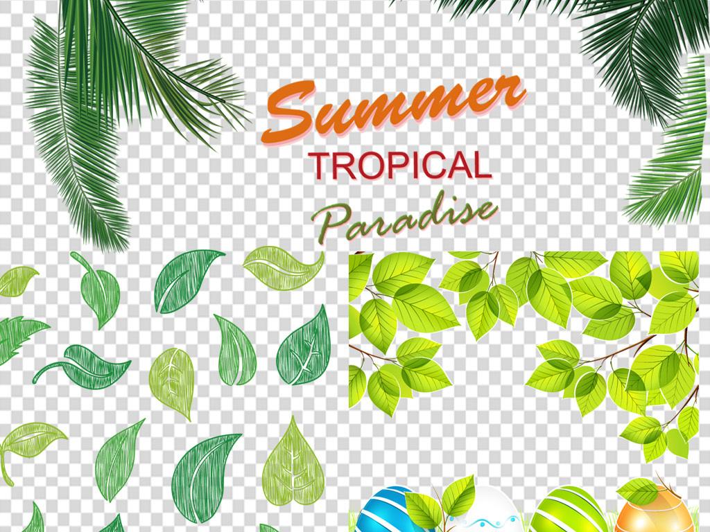 水滴绿叶的图片绿叶植物绿叶底纹叶子环保素材叶子素材春夏春夏素材