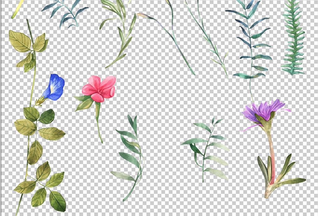 手绘水彩花卉花束叶子花卉叶子免抠素材