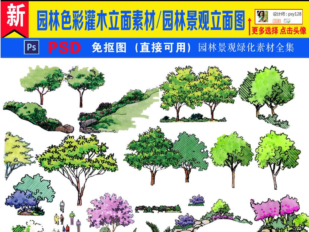 树木大树                                  景观设计园林