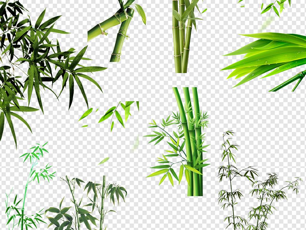 中国风竹子卡通手绘竹子熊猫吃