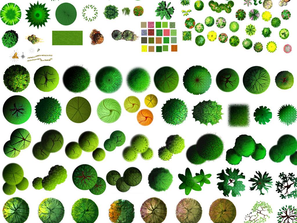 园林彩平图手绘素材园林平面景观素材