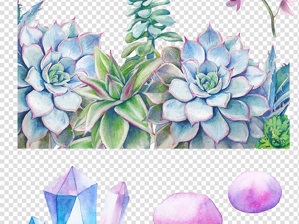 png)手绘多肉植物素材手绘水晶素材多肉素材清新植物素材