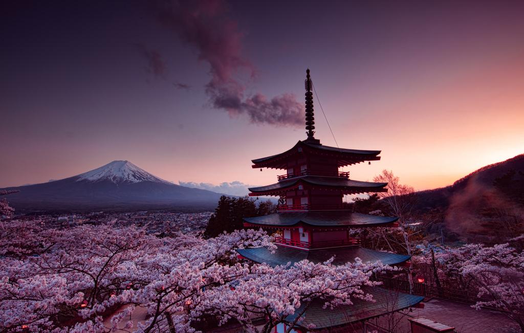 富士山塔樱花日本4k风景图片