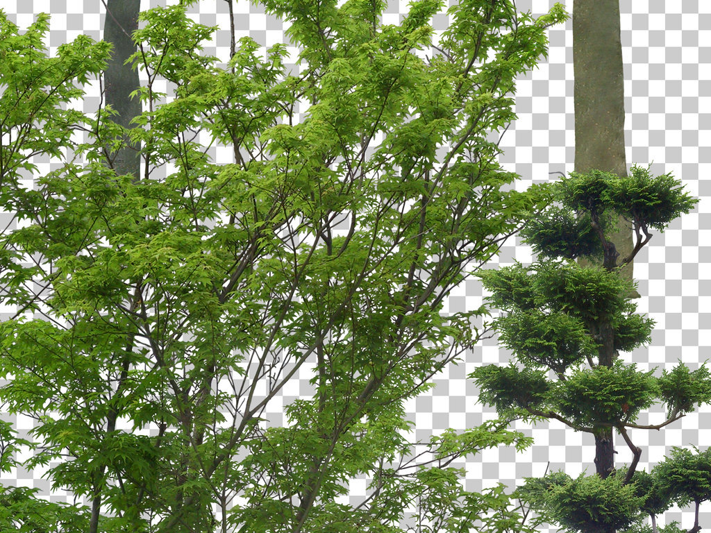 植物绿化山坡草地植被园林景观树木配景石头水景花卉藤蔓设计元素