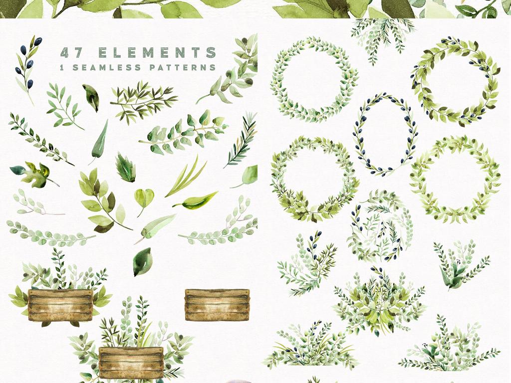 清新绿色手绘树叶药草png免扣设计元素