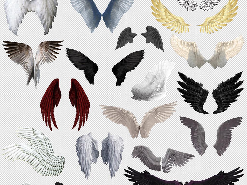 png)                                  手绘翅膀天使翅膀羽毛翅膀