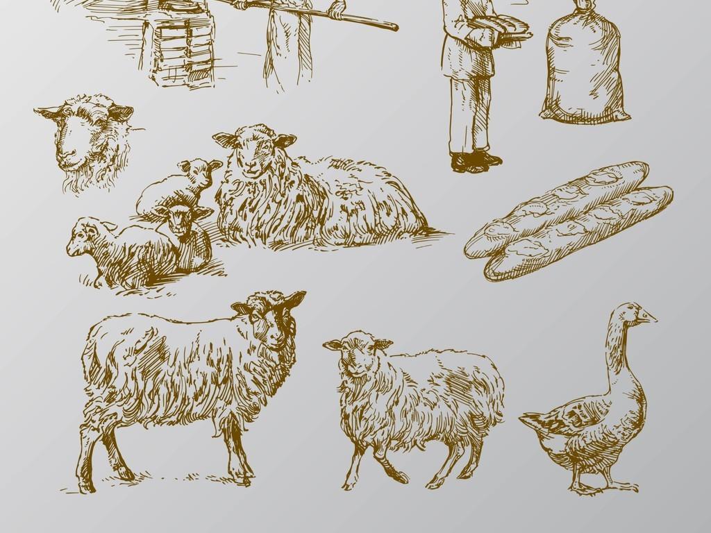 手绘烘焙家禽类矢量图