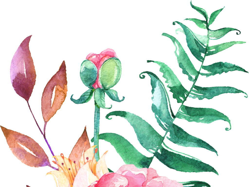 花卉花卉手绘手绘花形手绘花藤花手绘墙手绘蔷薇花手绘太阳花复古手绘