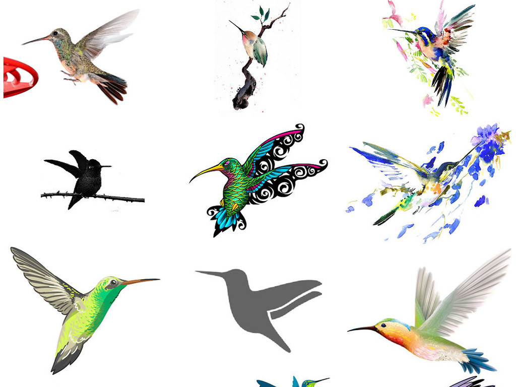 手绘蜂鸟卡通蜂鸟免抠png图片素材3