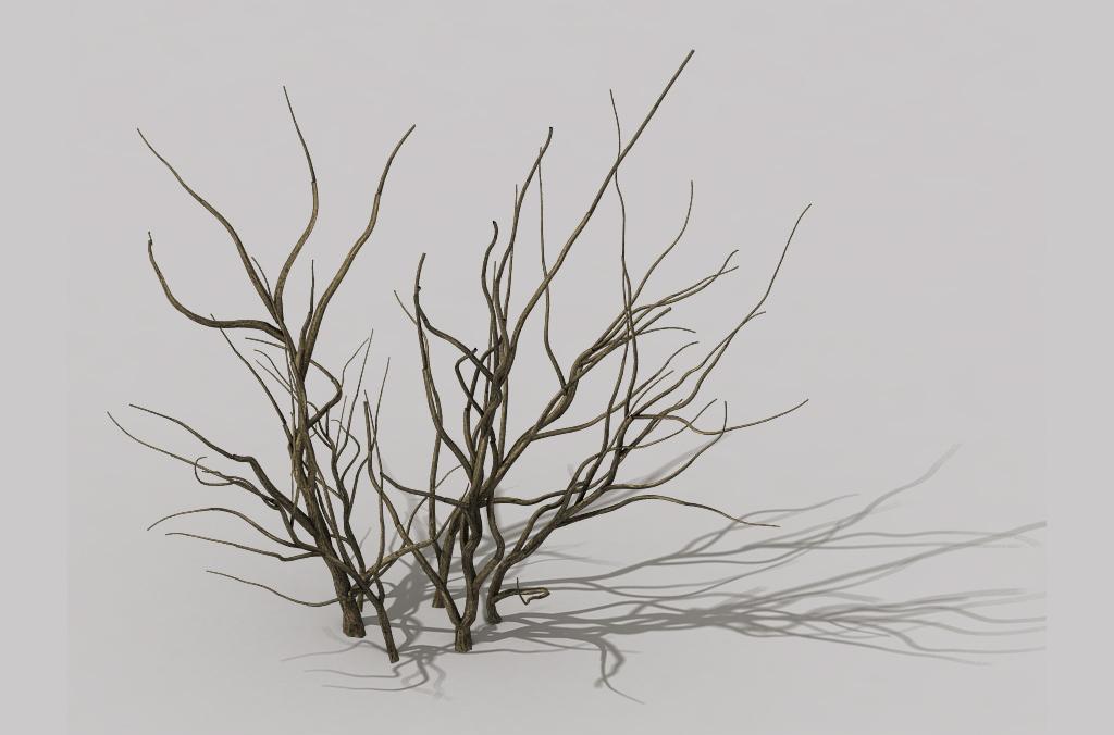 3d干枯灌木丛干枯植物枯枝枯木素材