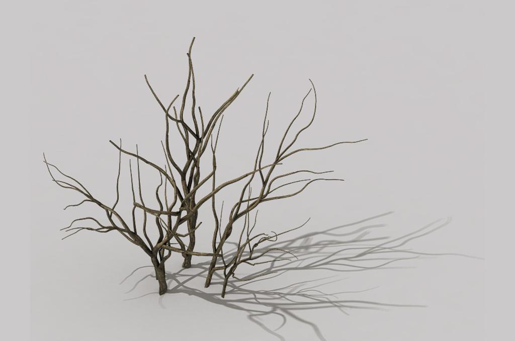 41:56 模型灯光 : 有 材质贴图 : 有 我图网提供精品流行3d干枯灌木丛