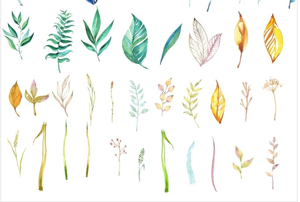 森系小清新叶子手绘