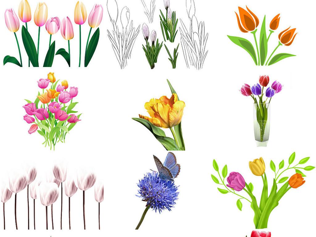 花儿花朵郁金香手绘郁金香png图片2