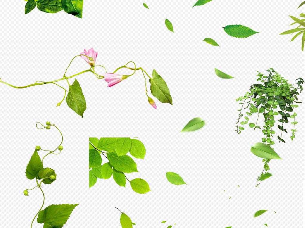 叶子飞舞绿叶手绘绿叶                                  绿叶边框