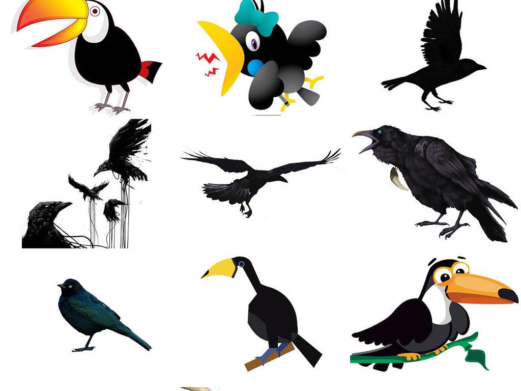 精美卡通黑乌鸦彩色乌鸦png图片3图片