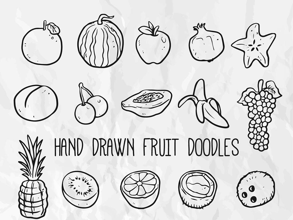 手绘水果插画线条