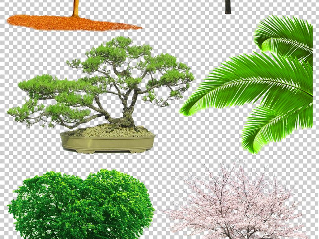 设计元素 自然素材 树叶 > 园林植物景观树木树叶花卉png免抠素材合集