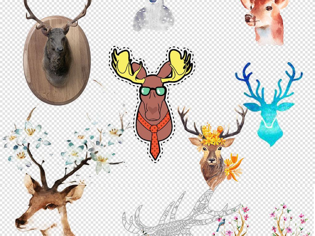 森林鹿鹿水彩鹿                                  插画