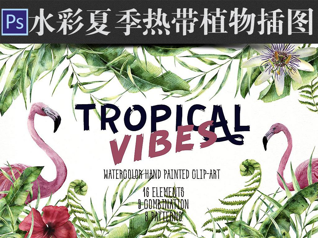 水彩画唯美热带植物绿叶叶子边框海报请柬贺卡设计素材包