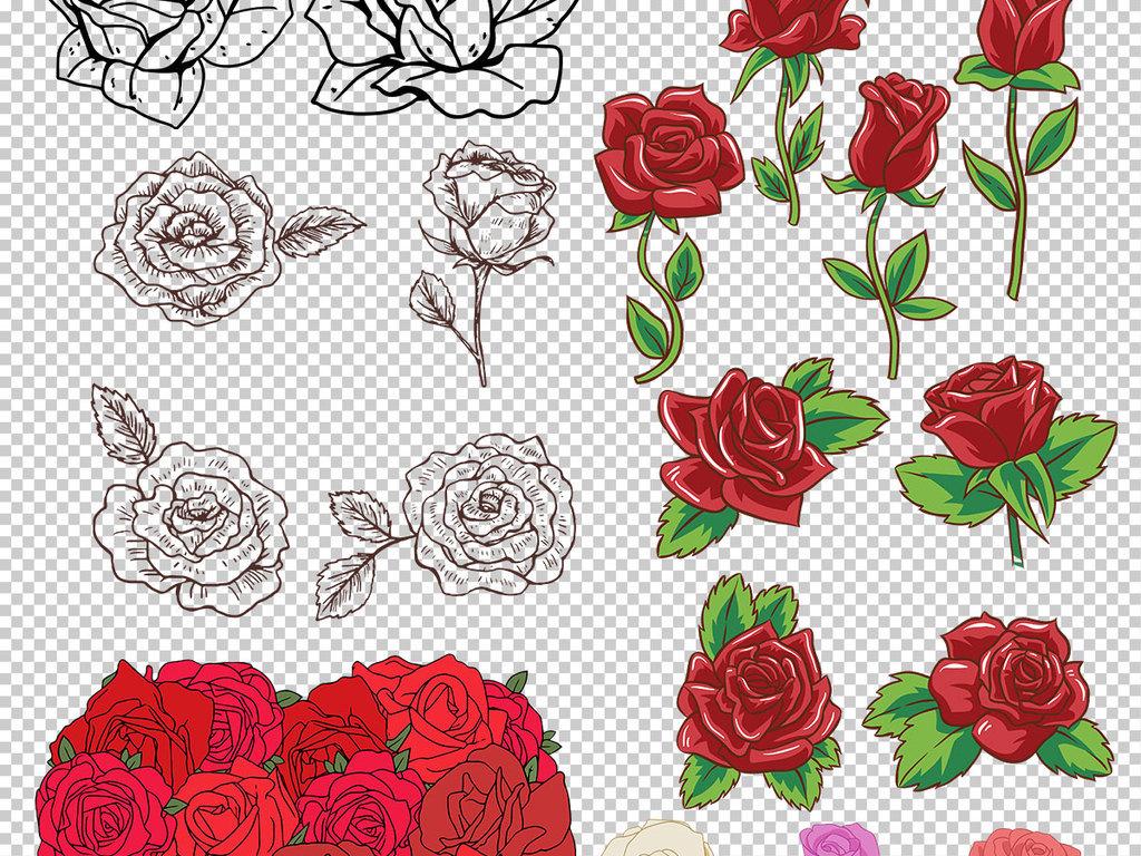 psd)手绘玫瑰素材写实玫瑰玫瑰花png透明图