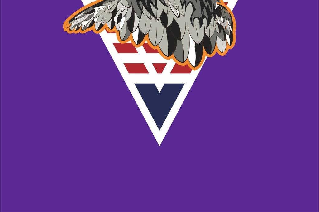 几何条纹图形卡通鹰头国旗图案字母文字印花