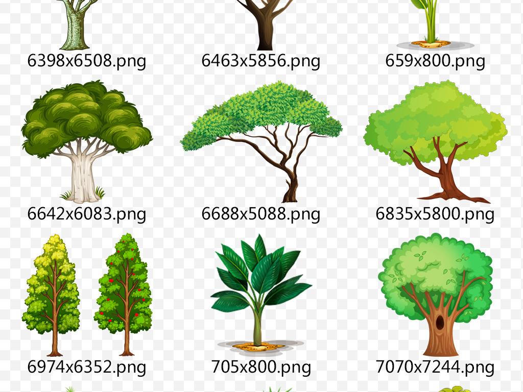 园林植物景观卡通树木矢量小树大树表情素材