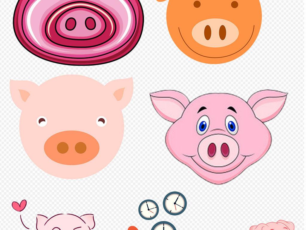 真实可爱小猪宠物猪动物素材