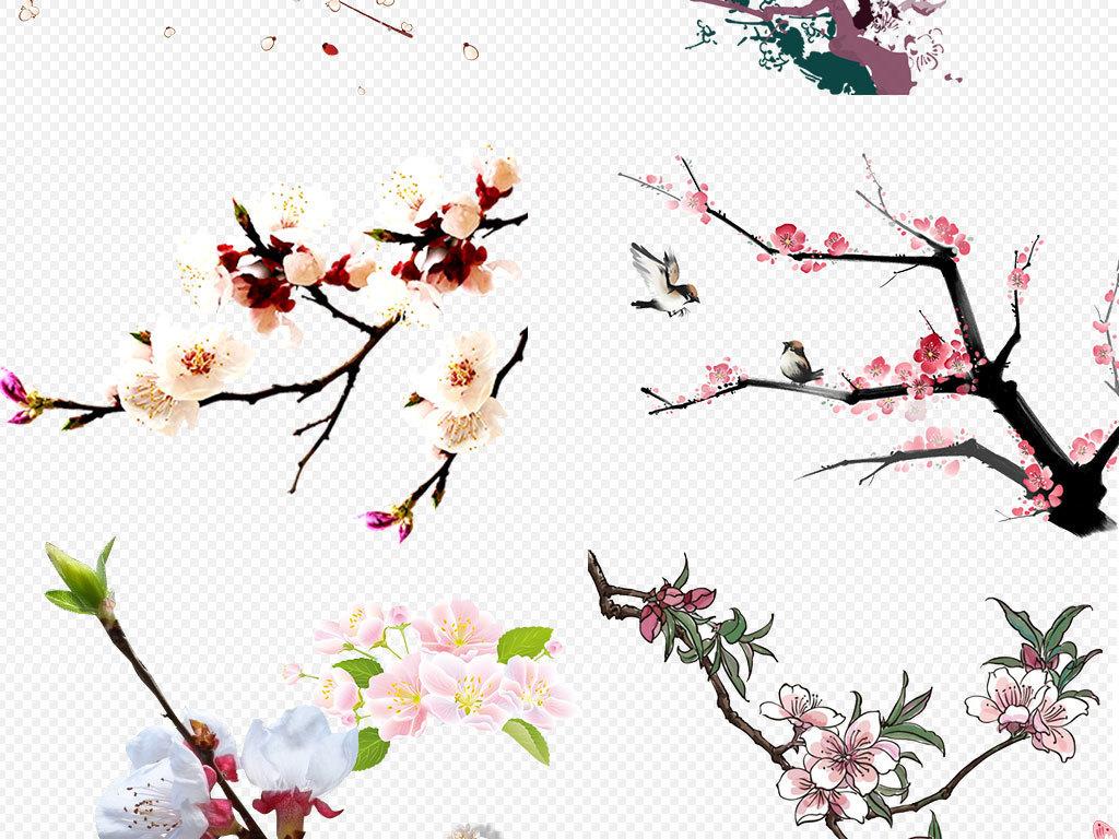 卡通花朵                                  手绘杏花