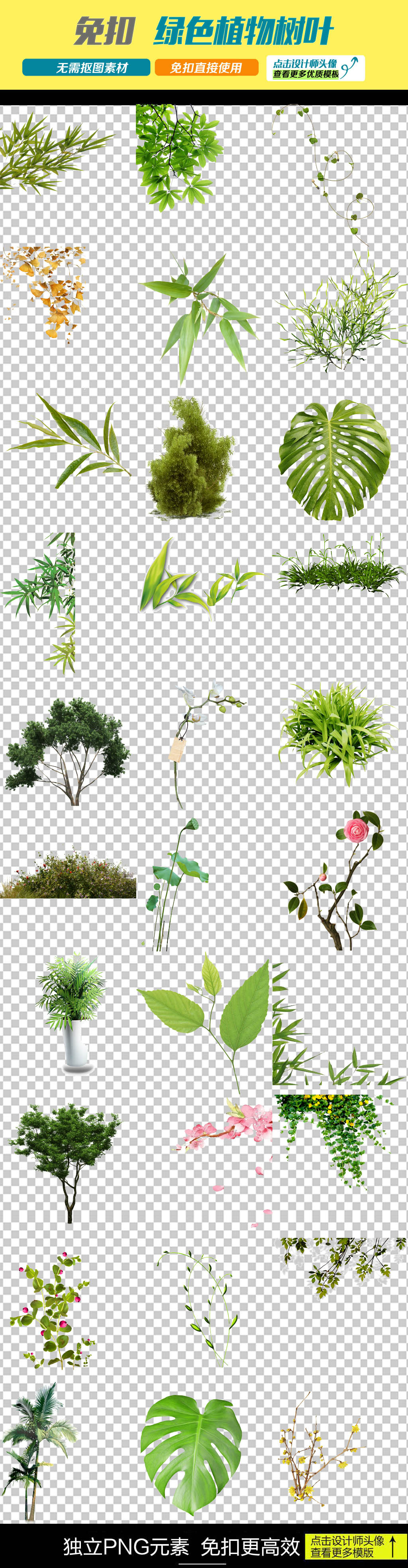 绿色植物树叶漂浮藤蔓png素材