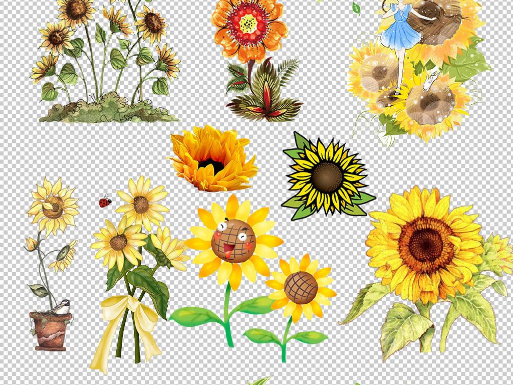 向日葵手绘