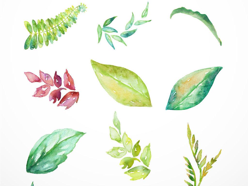 树叶背景森系素材叶片素材彩绘叶子复古背景小清新png透明图片花卉