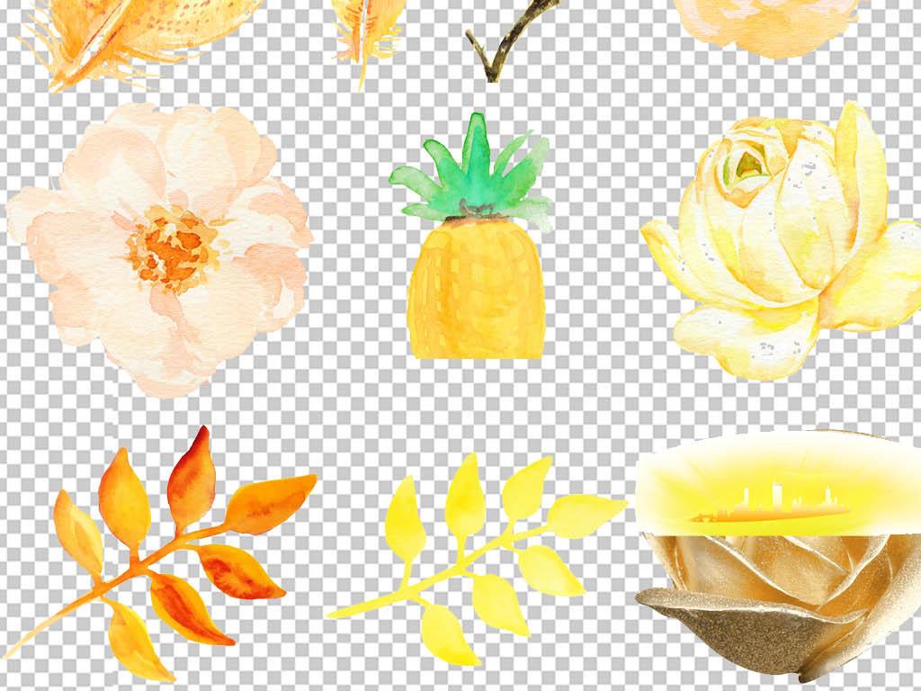 黄色水彩手绘花卉png设计素材