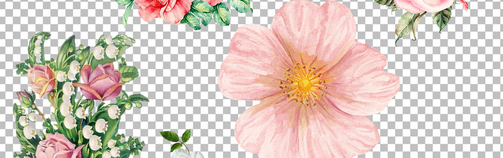 素材唯美素材手绘手绘唯美手绘花形手绘花藤花手绘墙花手绘手绘蔷薇花