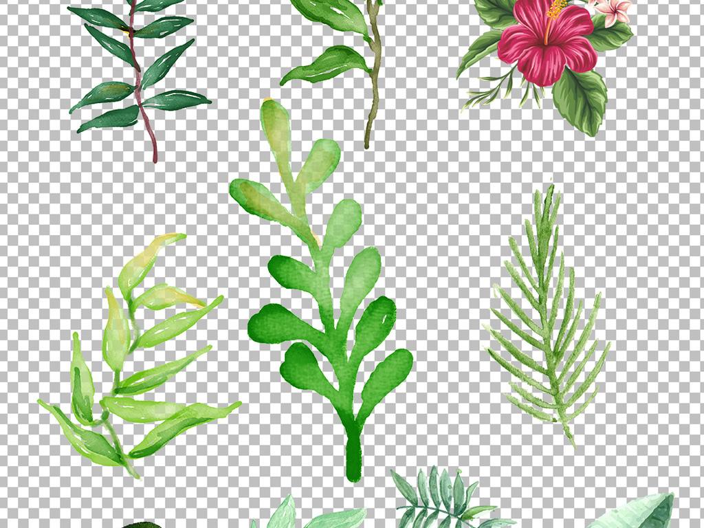 手绘水彩水彩素材水彩叶子素材手绘叶子手绘素材叶子素材叶子手绘素材
