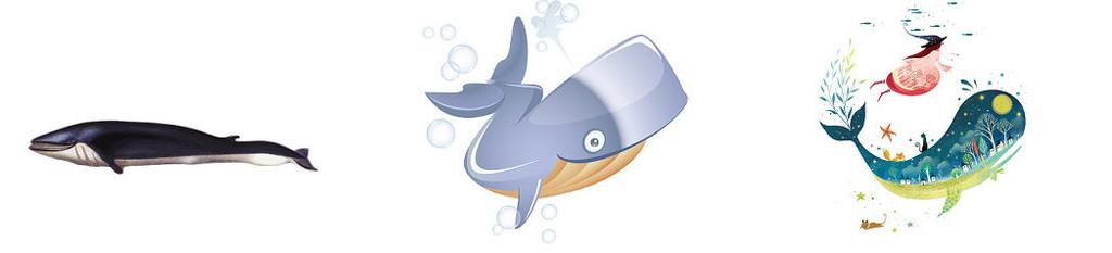 卡通海豚免抠png透明素材3