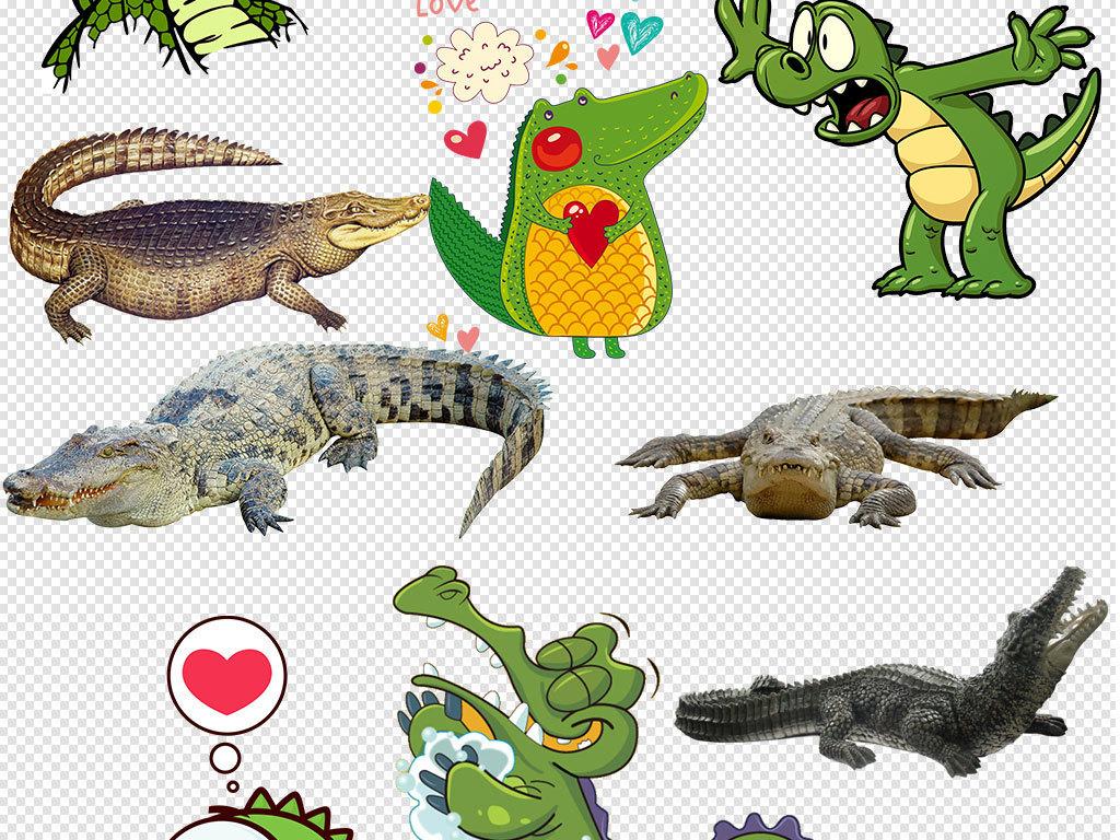 卡通鳄鱼动物设计png透明背景免扣素材